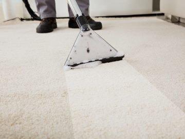Why Participate in A Carpet Cleaning Firm?